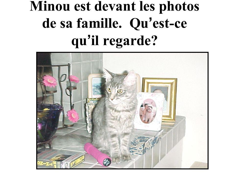 Minou est devant les photos de sa famille. Qu est-ce qu il regarde?