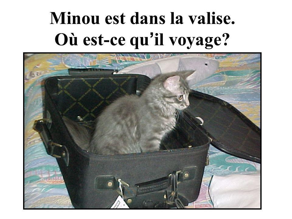 Minou est dans la valise. Où est-ce qu il voyage