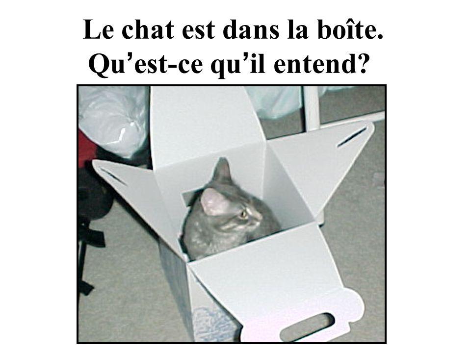 Le chat est dans la boîte. Qu est-ce qu il entend