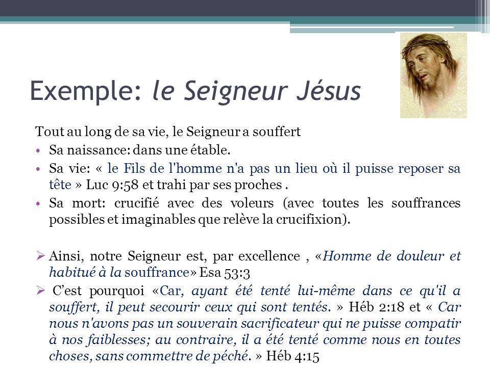 Exemple: le Seigneur Jésus Tout au long de sa vie, le Seigneur a souffert Sa naissance: dans une étable. Sa vie: « le Fils de l'homme n'a pas un lieu