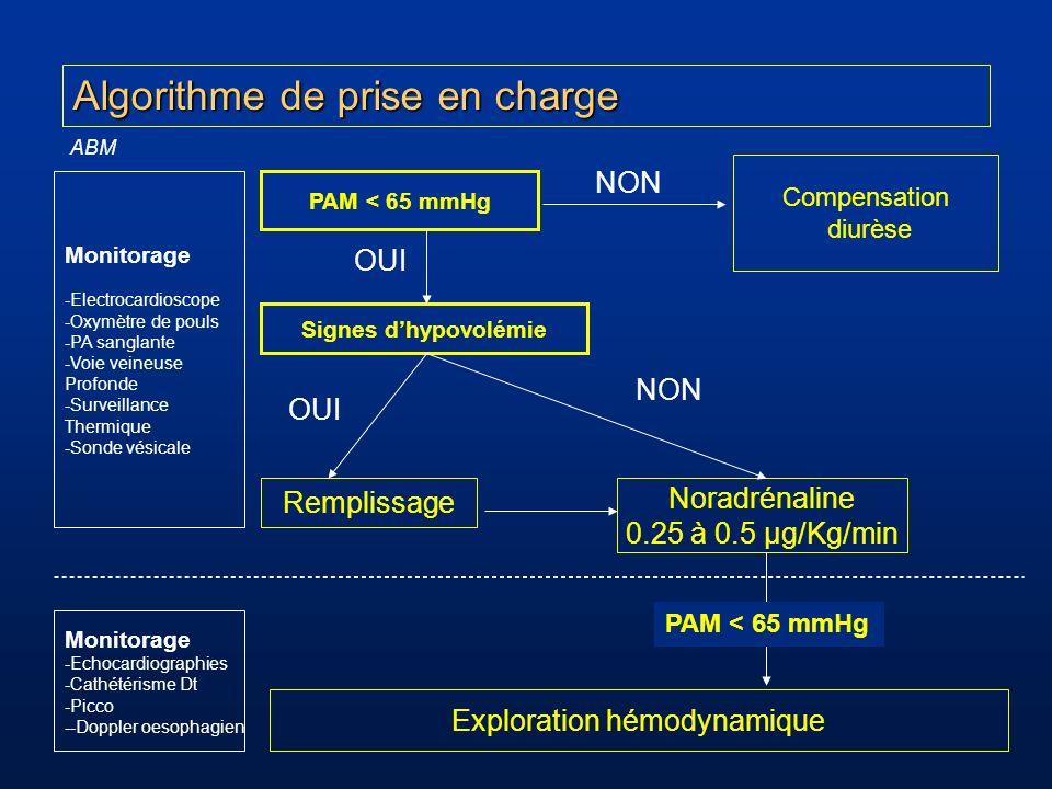 Algorithme de prise en charge Exploration hémodynamique Remplissage Compensation diurèse Signes dhypovolémie PAM < 65 mmHg NON OUI Noradrénaline 0.25