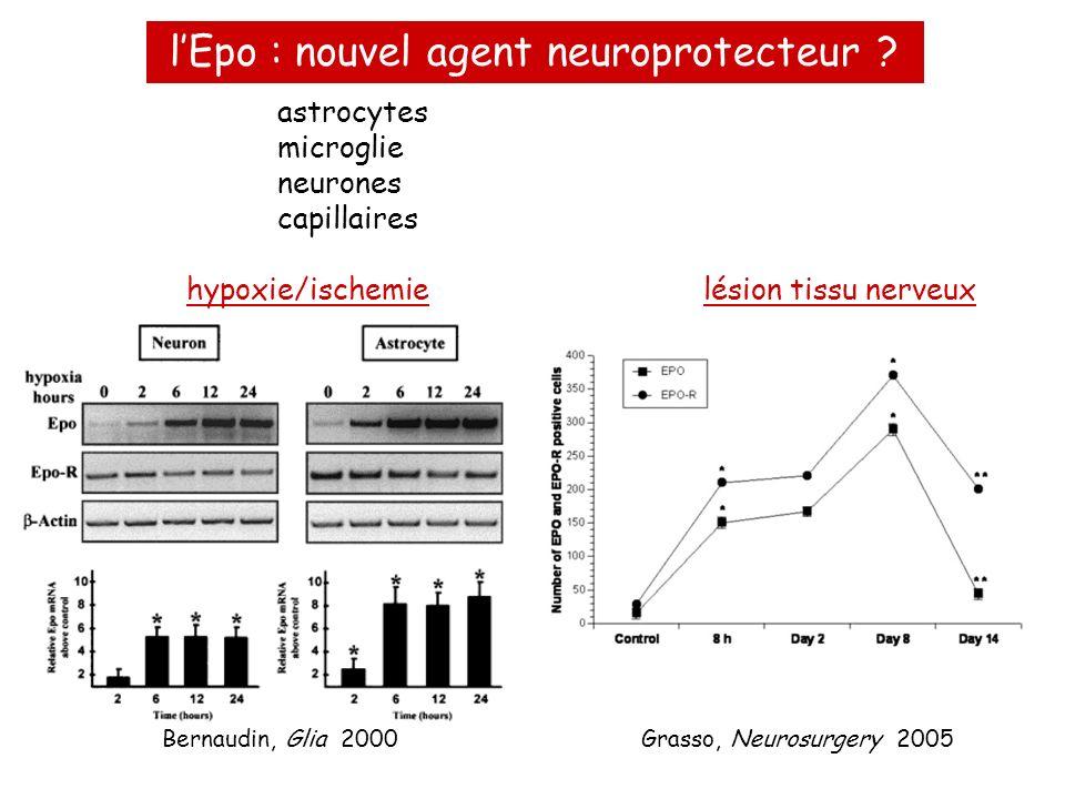 astrocytes microglie neurones capillaires hypoxie/ischemielésion tissu nerveux lEpo : nouvel agent neuroprotecteur ? Grasso, Neurosurgery 2005Bernaudi