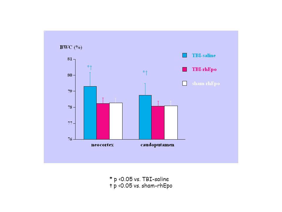 * p <0.05 vs. TBI-saline t p <0.05 vs. sham-rhEpo