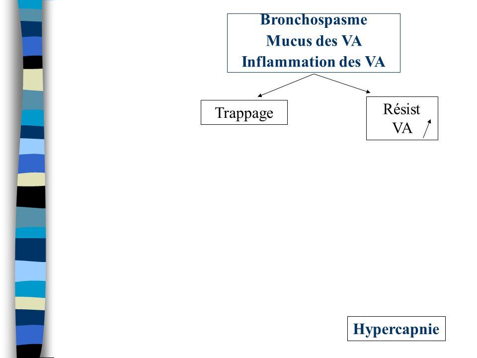 Hypercapnie Résist VA Trappage Bronchospasme Mucus des VA Inflammation des VA