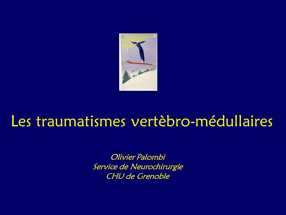 Charnière dorso-lombaire Paraplégie - De Th 10 à L 2 - L1 - Blessures de la moelle lombaire ou du cône terminal - Paraplégies complètes ou incomplètes Lésions disco-ligamentaires - 6% des lésions dorso-lombaire - Entorses, - Luxations, - Fractures-luxations