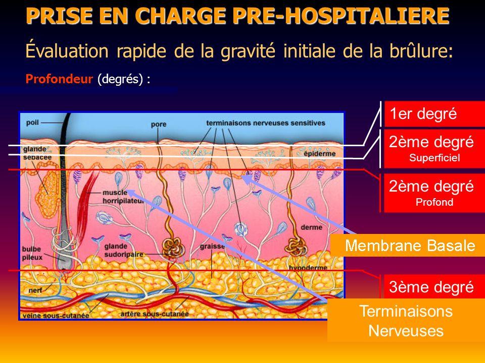PRISE EN CHARGE PRE-HOSPITALIERE Évaluation rapide de la gravité initiale de la brûlure: Profondeur (degrés) : 2ème degré Superficiel 1er degré 3ème degré 2ème degré Profond Terminaisons Nerveuses