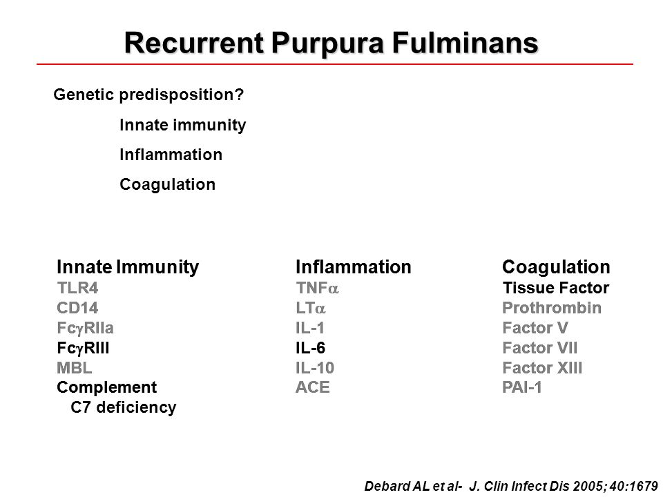 Recurrent Purpura Fulminans Genetic predisposition.