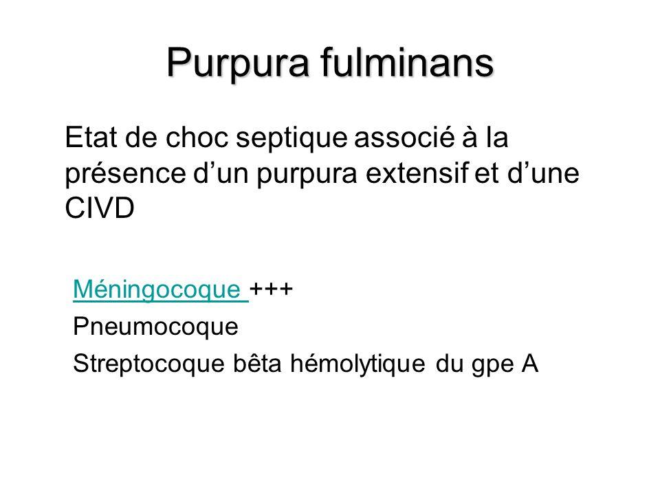 Purpura fulminans Etat de choc septique associé à la présence dun purpura extensif et dune CIVD Méningocoque Méningocoque +++ Pneumocoque Streptocoque