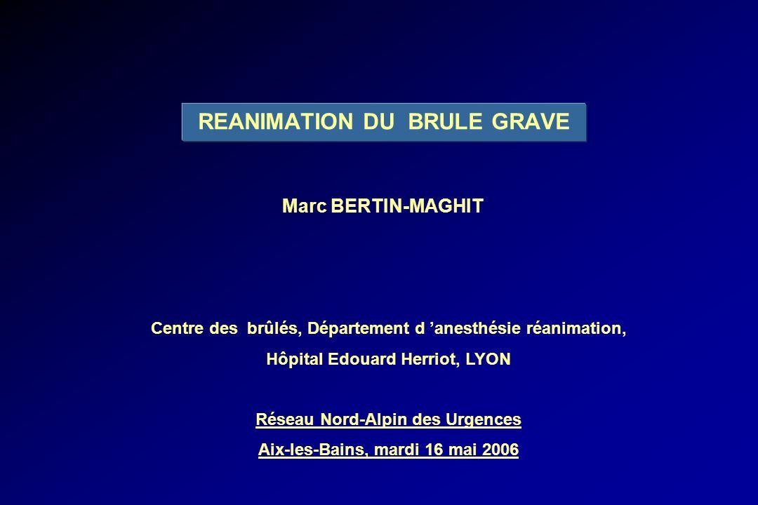 REANIMATION DU BRULE GRAVE Marc BERTIN-MAGHIT Centre des brûlés, Département d anesthésie réanimation, Hôpital Edouard Herriot, LYON Réseau Nord-Alpin