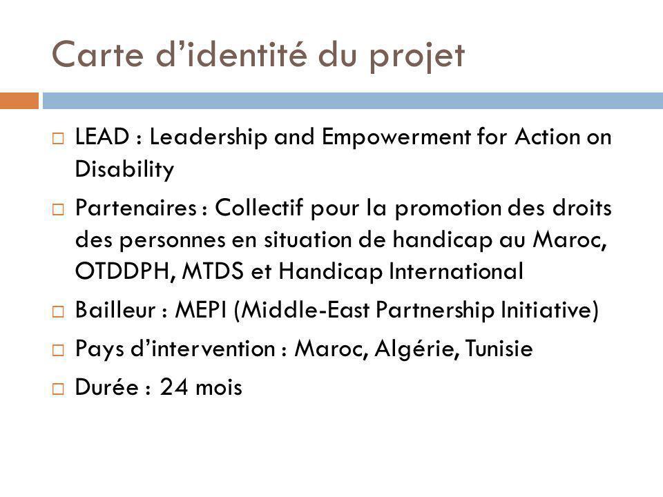 Carte didentité du projet LEAD : Leadership and Empowerment for Action on Disability Partenaires : Collectif pour la promotion des droits des personne