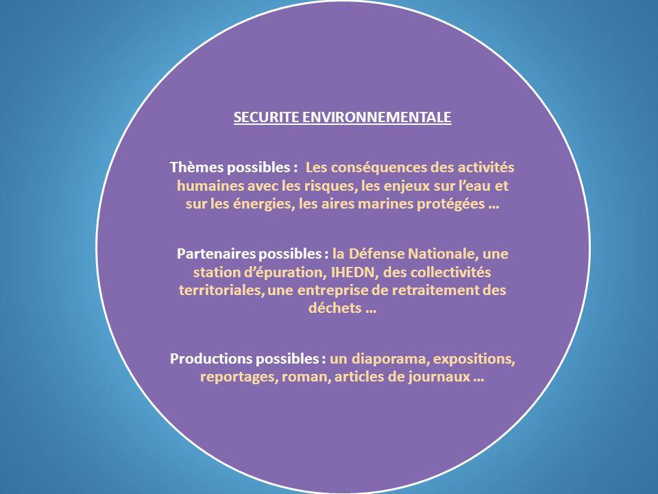 SECURITE ENVIRONNEMENTALE Thèmes possibles : Les conséquences des activités humaines avec les risques, les enjeux sur leau et sur les énergies, les ai