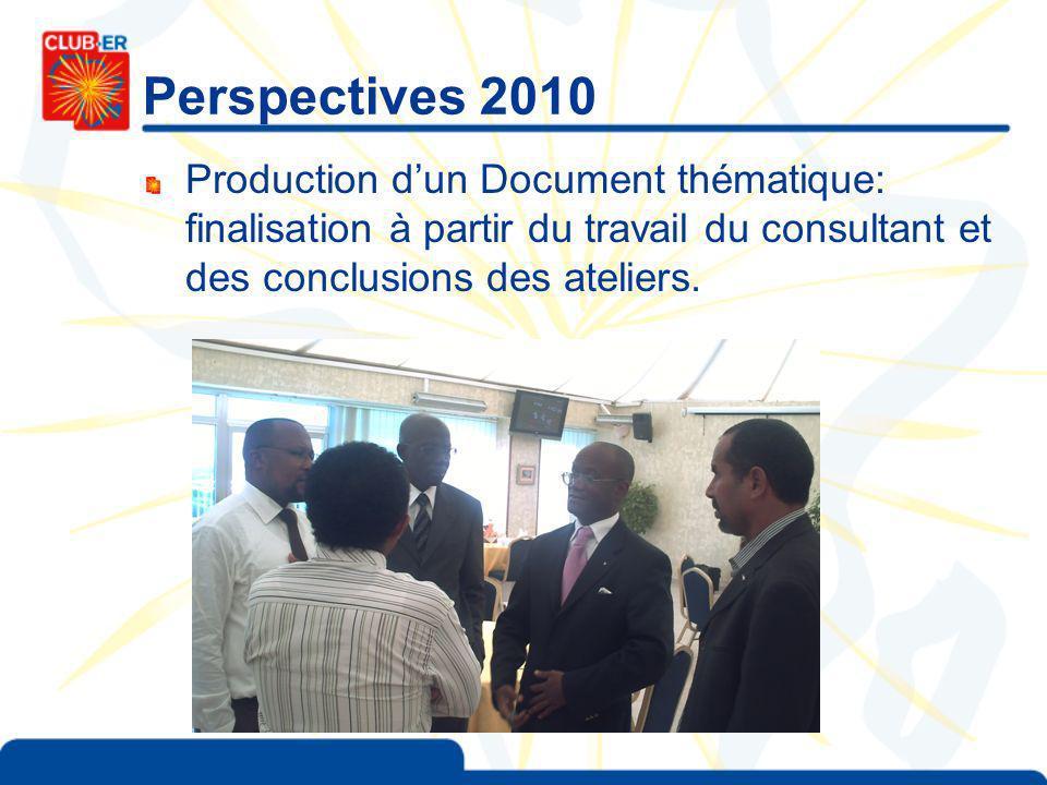 Perspectives 2010 Production dun Document thématique: finalisation à partir du travail du consultant et des conclusions des ateliers.