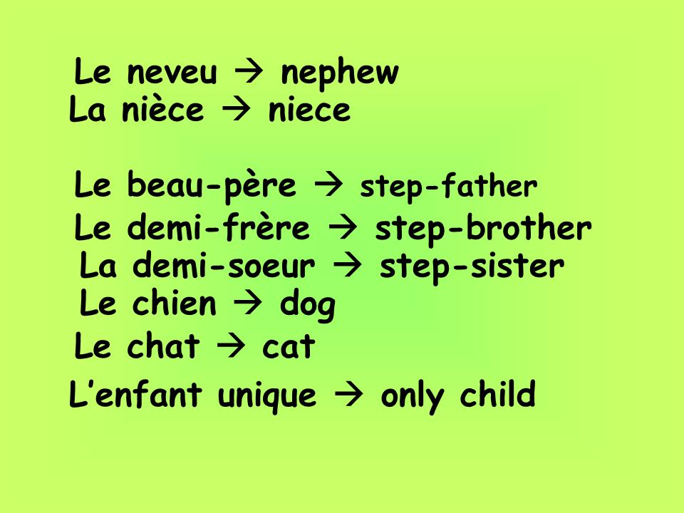 Le neveu nephew La nièce niece Le beau-père step-father Le demi-frère step-brother La demi-soeur step-sister Le chien dog Le chat cat Lenfant unique o