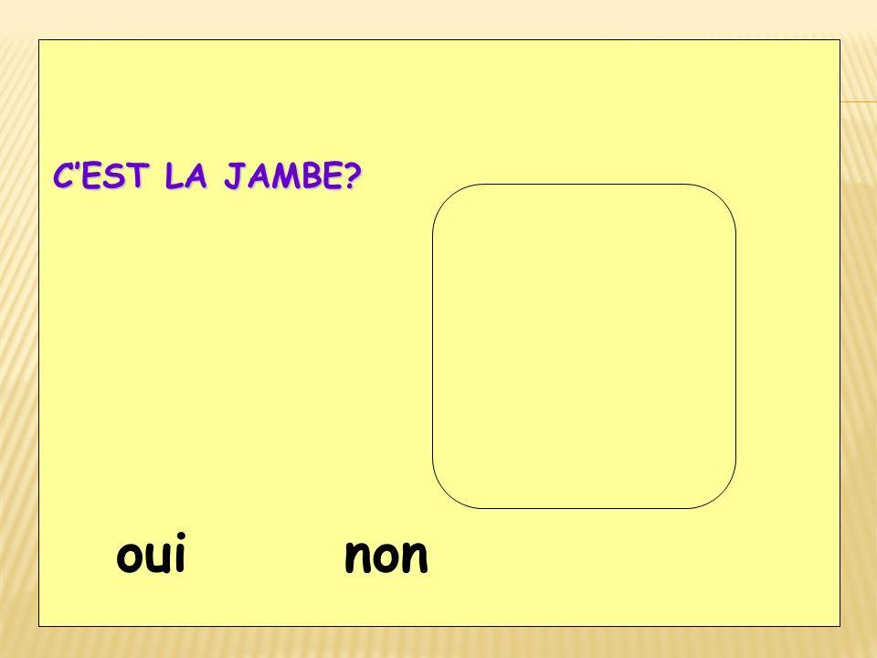 CEST LA JAMBE? ouinon