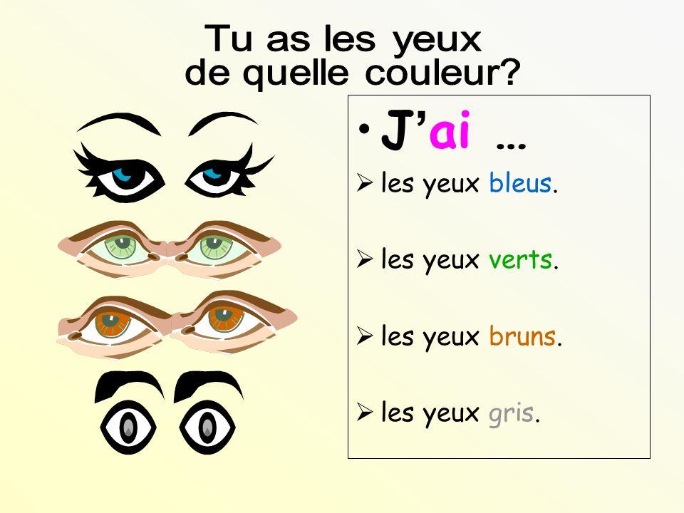 Jai … les yeux bleus. les yeux verts. les yeux bruns. les yeux gris.