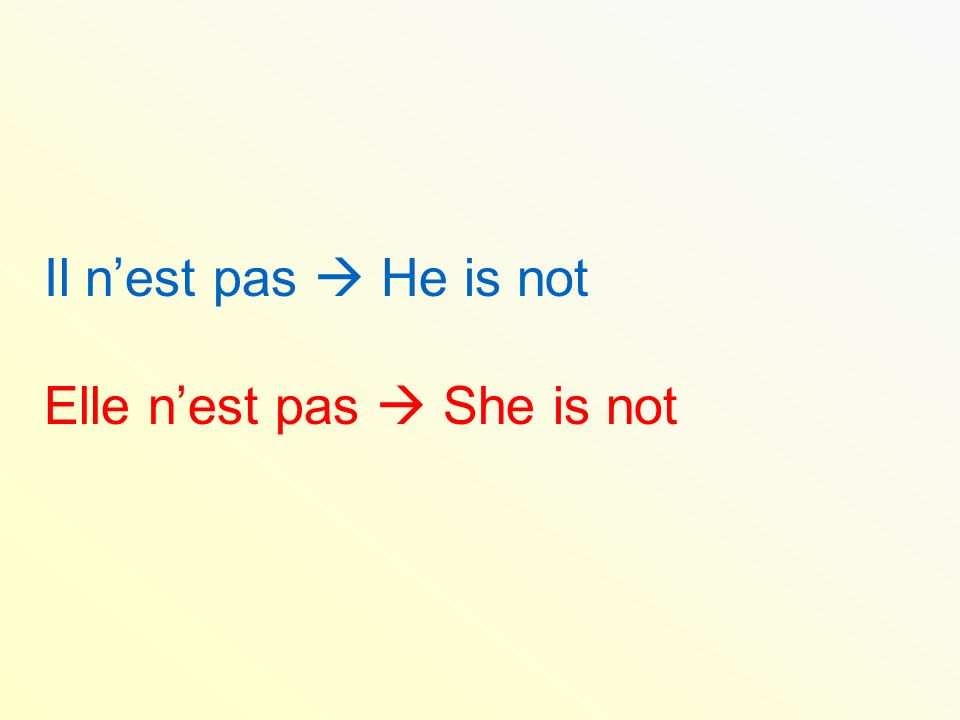 Il nest pas He is not Elle nest pas She is not