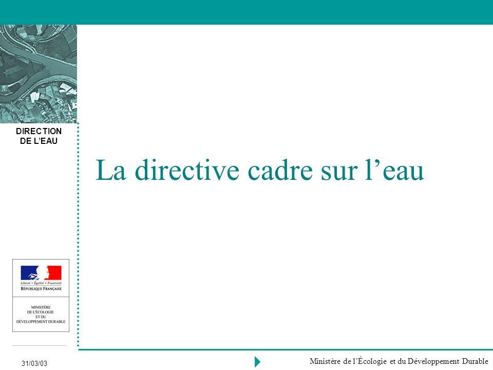 DIRECTION DE LEAU 31/03/03 Ministère de lÉcologie et du Développement Durable La directive cadre sur leau