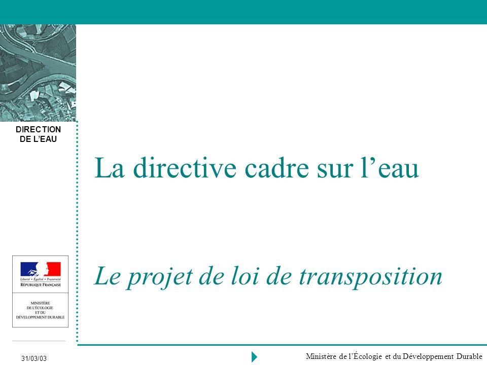 DIRECTION DE LEAU 31/03/03 Ministère de lÉcologie et du Développement Durable La directive cadre sur leau Le projet de loi de transposition