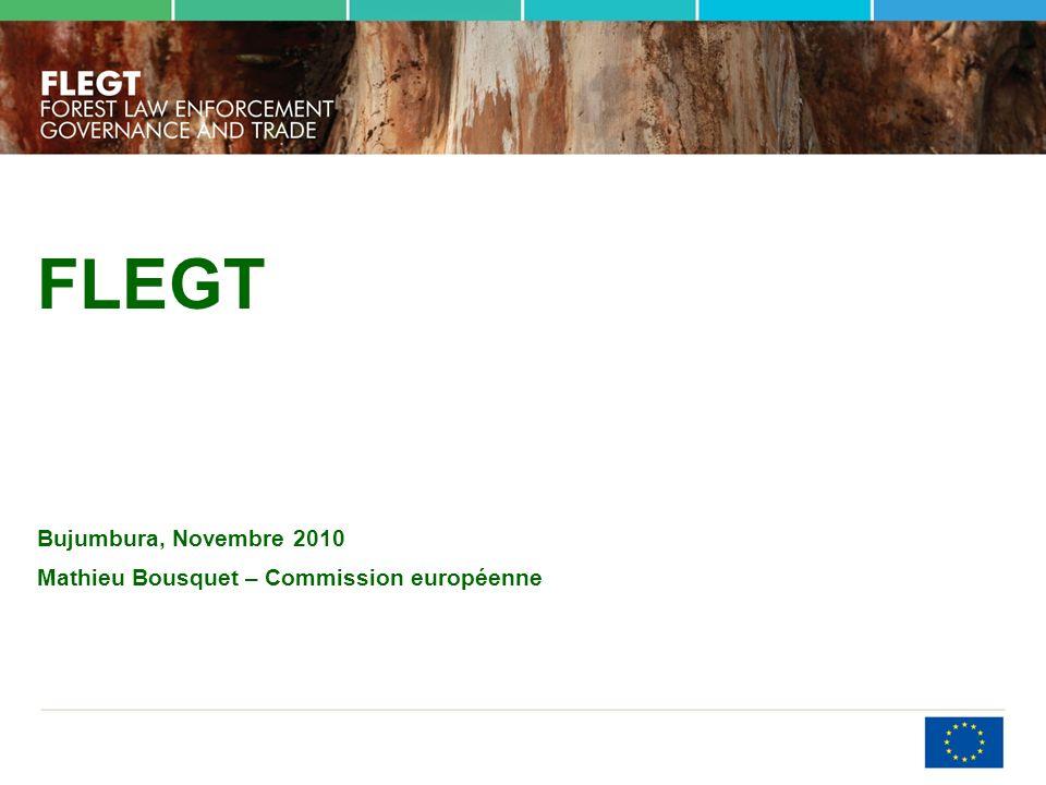 FLEGT Bujumbura, Novembre 2010 Mathieu Bousquet – Commission européenne