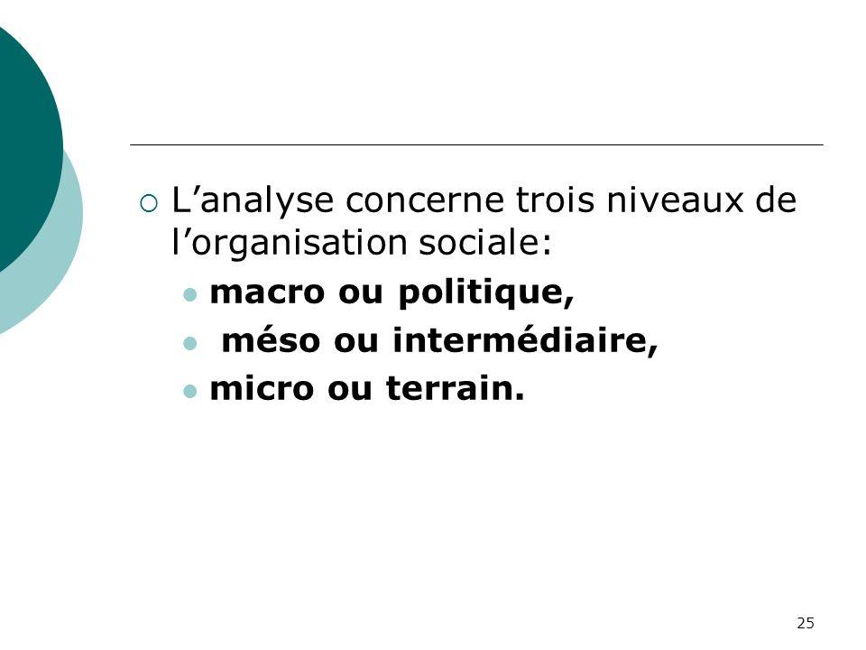 25 Lanalyse concerne trois niveaux de lorganisation sociale: macro ou politique, méso ou intermédiaire, micro ou terrain.