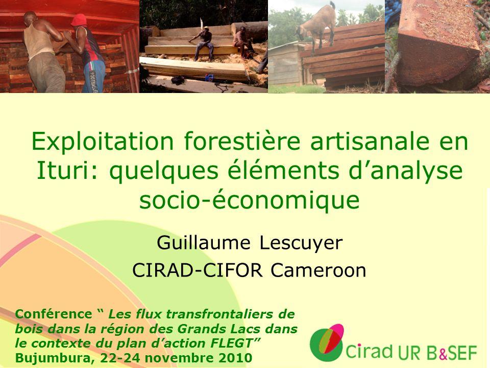Ur B&SEF Exploitation forestière artisanale en Ituri: quelques éléments danalyse socio-économique Guillaume Lescuyer CIRAD-CIFOR Cameroon Conférence L