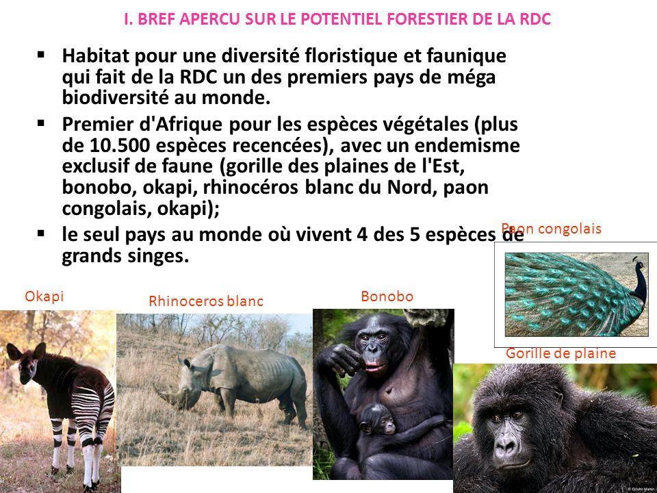 Habitat pour une diversité floristique et faunique qui fait de la RDC un des premiers pays de méga biodiversité au monde.