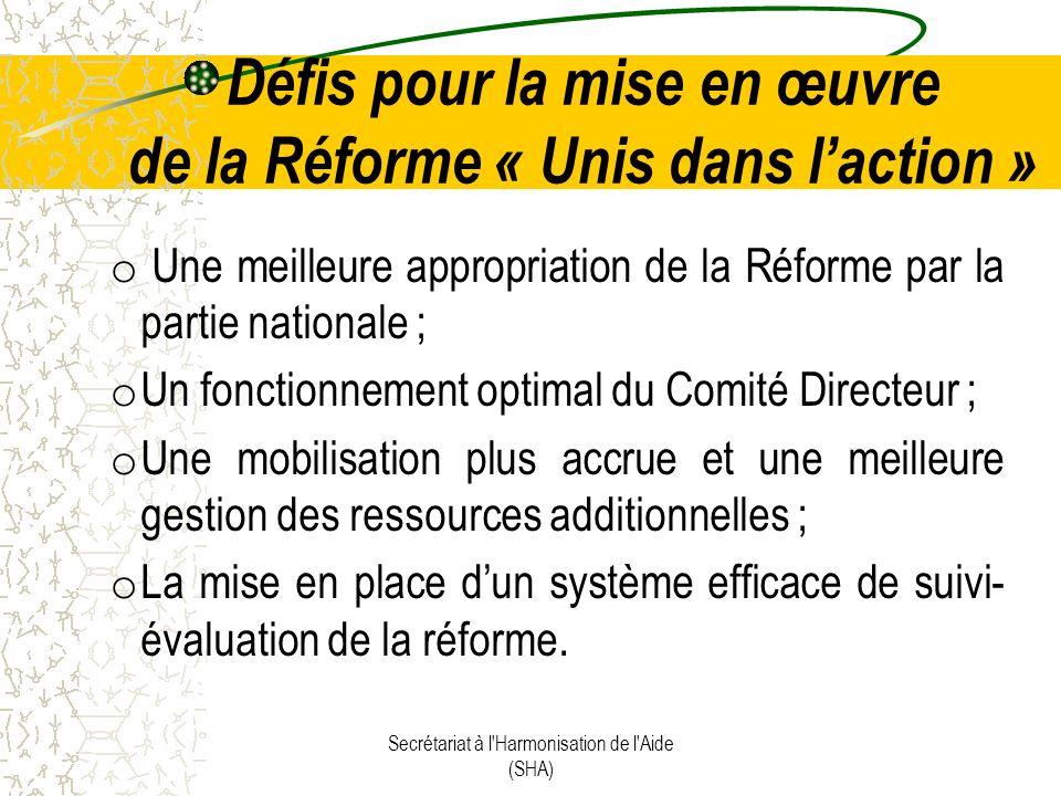 Défis pour la mise en œuvre de la Réforme « Unis dans laction » o Une meilleure appropriation de la Réforme par la partie nationale ; o Un fonctionnement optimal du Comité Directeur ; o Une mobilisation plus accrue et une meilleure gestion des ressources additionnelles ; o La mise en place dun système efficace de suivi- évaluation de la réforme.