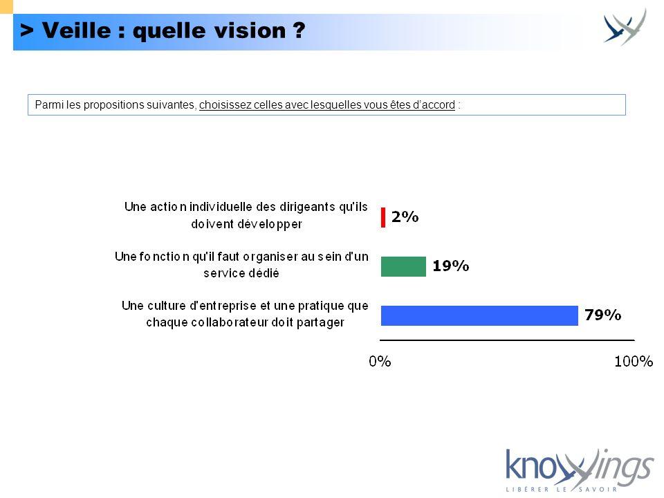 > Veille : quelle vision ? Parmi les propositions suivantes, choisissez celles avec lesquelles vous êtes daccord :