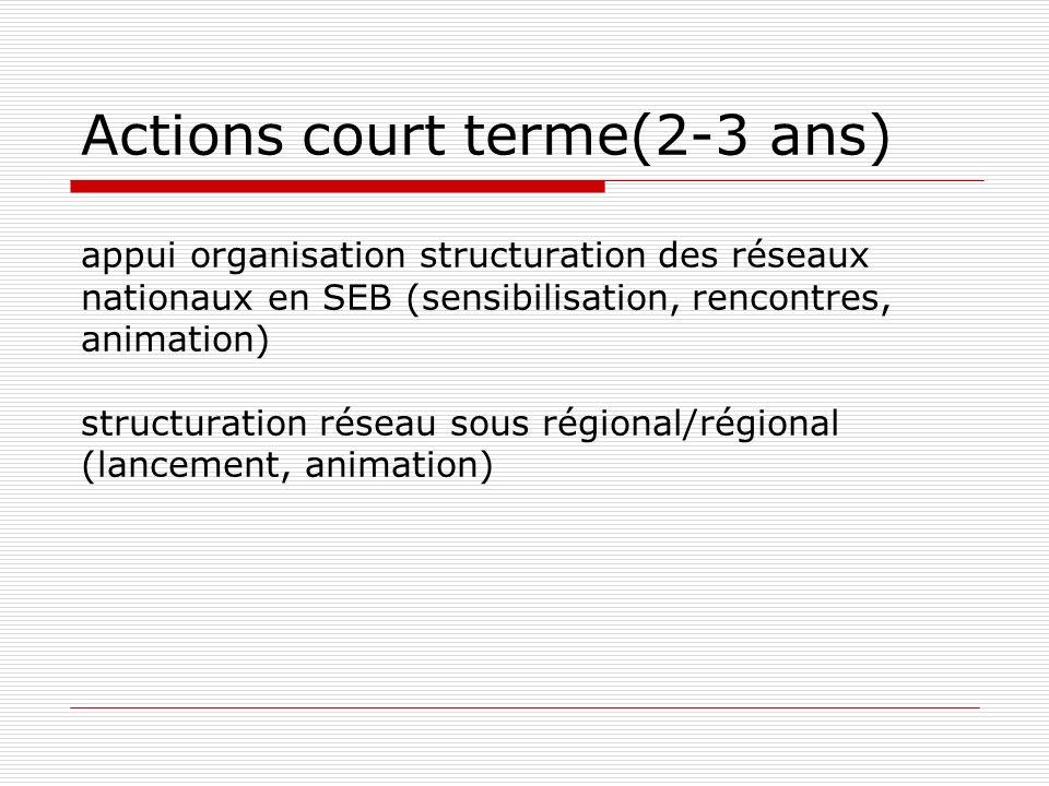 Actions court terme(2-3 ans) appui organisation structuration des réseaux nationaux en SEB (sensibilisation, rencontres, animation) structuration réseau sous régional/régional (lancement, animation)