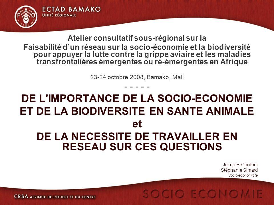 Atelier consultatif sous-régional sur la Faisabilité dun réseau sur la socio-économie et la biodiversité pour appuyer la lutte contre la grippe aviaire et les maladies transfrontalières émergentes ou ré-émergentes en Afrique 23-24 octobre 2008, Bamako, Mali - - - - - DE L IMPORTANCE DE LA SOCIO-ECONOMIE ET DE LA BIODIVERSITE EN SANTE ANIMALE et DE LA NECESSITE DE TRAVAILLER EN RESEAU SUR CES QUESTIONS Jacques Conforti Stéphanie Simard Socio-économiste