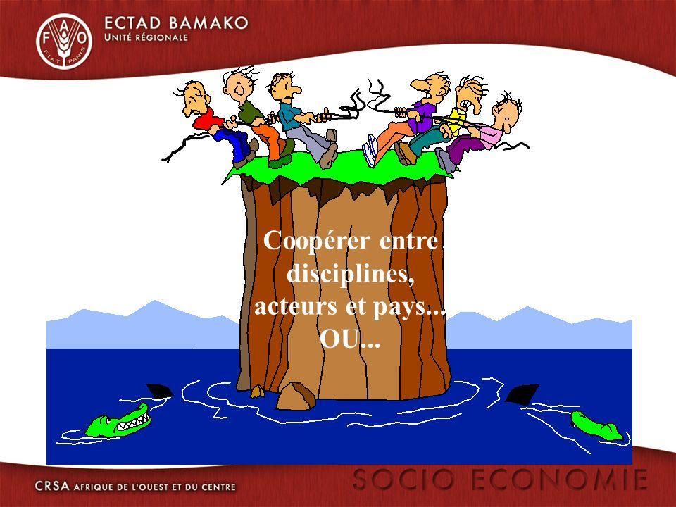 Coopérer entre disciplines, acteurs et pays... OU...
