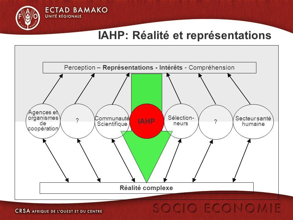 Perception – Représentations - Intérêts - Compréhension Secteur santé humaine Communauté Scientifique Réalité complexe Agences et organismes de coopération .