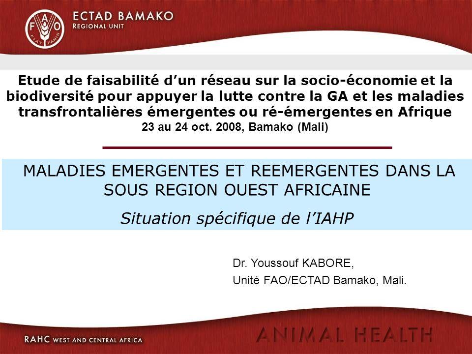 Dr. Youssouf KABORE, Unité FAO/ECTAD Bamako, Mali. MALADIES EMERGENTES ET REEMERGENTES DANS LA SOUS REGION OUEST AFRICAINE Situation spécifique de lIA