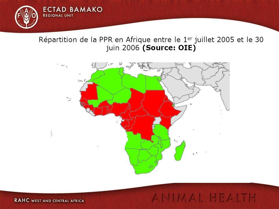 Répartition de la PPR en Afrique entre le 1 er juillet 2005 et le 30 juin 2006 (Source: OIE)