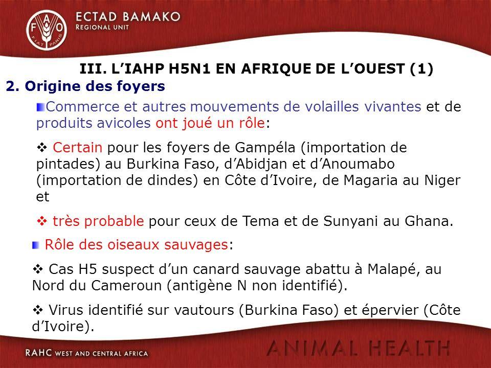 III. LIAHP H5N1 EN AFRIQUE DE LOUEST (1) 2. Origine des foyers Commerce et autres mouvements de volailles vivantes et de produits avicoles ont joué un