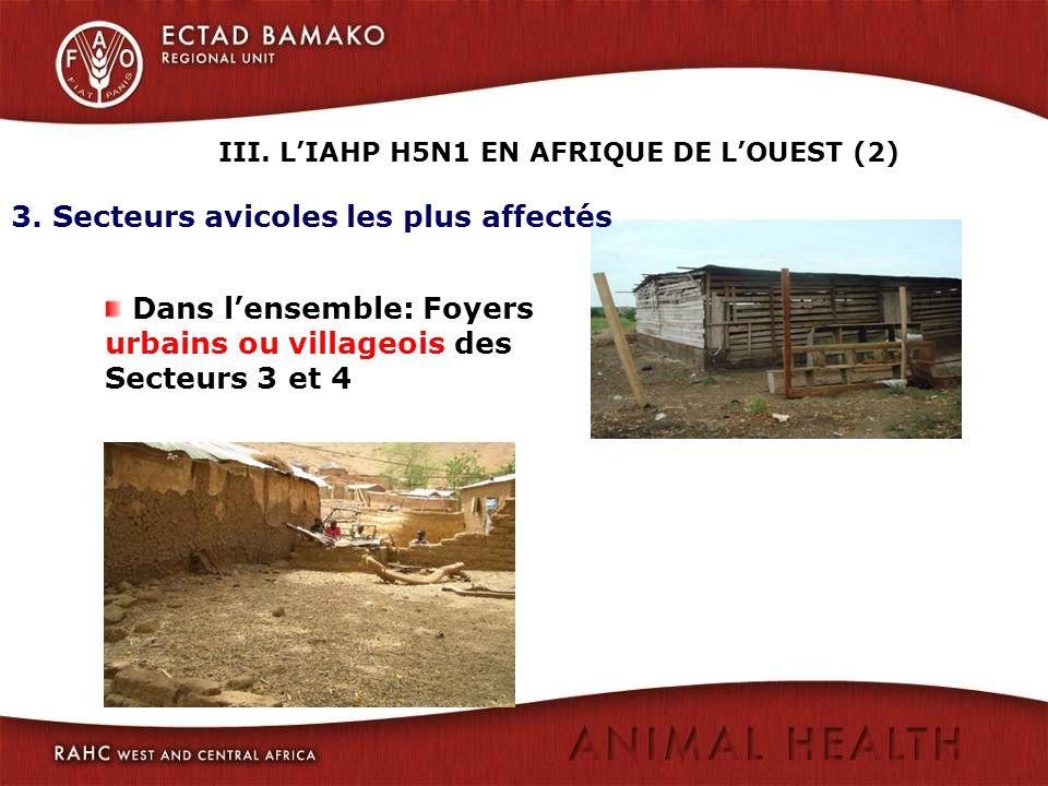 3. Secteurs avicoles les plus affectés Dans lensemble: Foyers urbains ou villageois des Secteurs 3 et 4 III. LIAHP H5N1 EN AFRIQUE DE LOUEST (2)