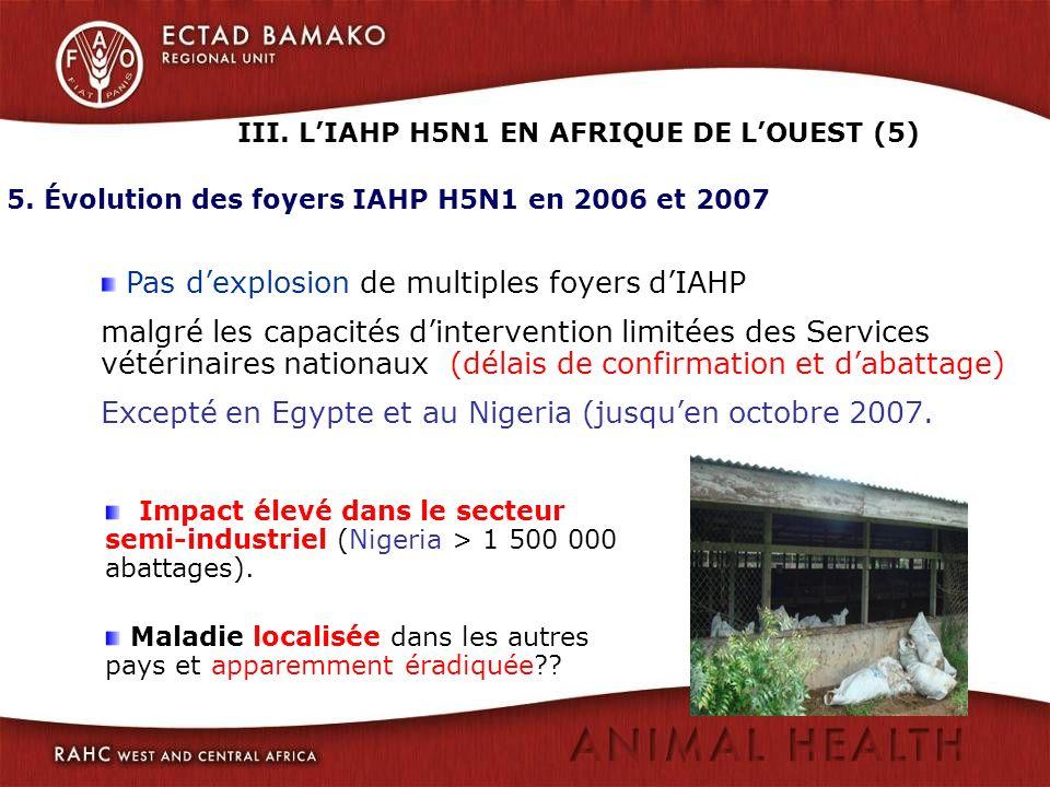 5. Évolution des foyers IAHP H5N1 en 2006 et 2007 Impact élevé dans le secteur semi-industriel (Nigeria > 1 500 000 abattages). Maladie localisée dans