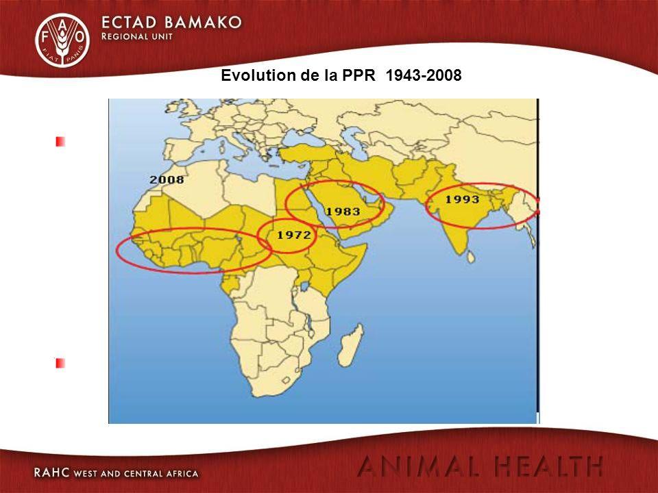 4.Espèces affectées Différentes selon les pays et les foyers: Poulets dans tous les pays.