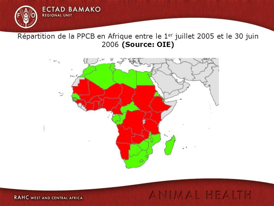 Répartition de la PPCB en Afrique entre le 1 er juillet 2005 et le 30 juin 2006 (Source: OIE)