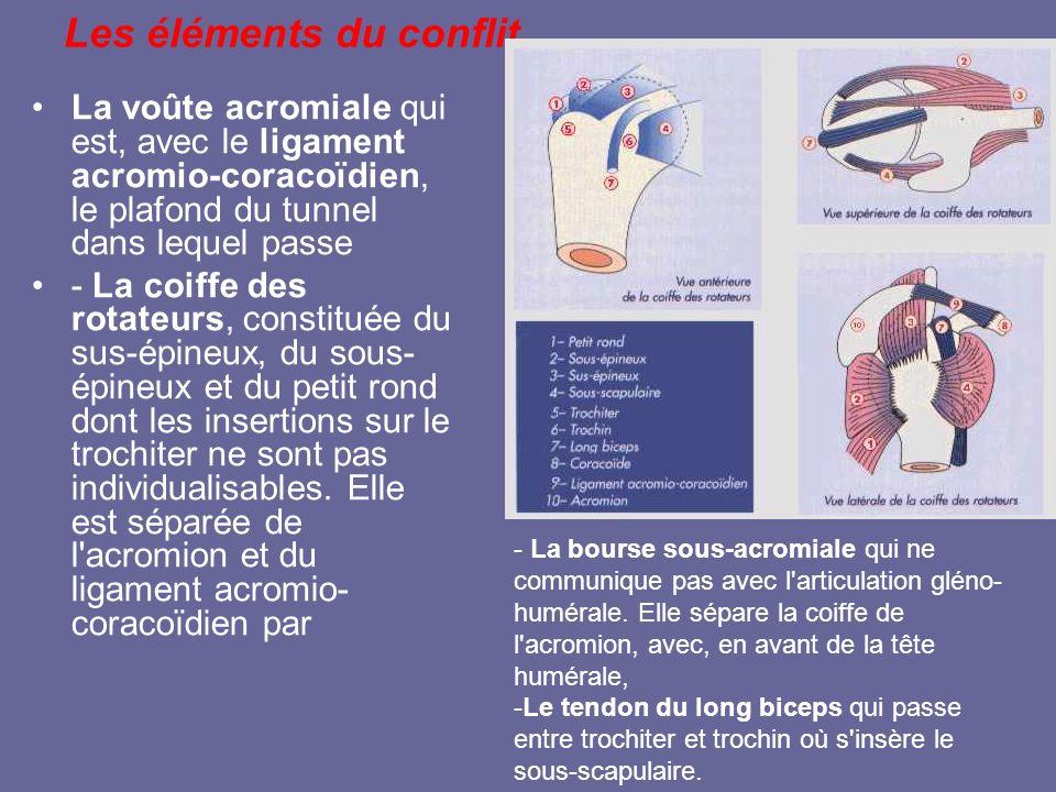 Les éléments du conflit La voûte acromiale qui est, avec le ligament acromio-coracoïdien, le plafond du tunnel dans lequel passe - La coiffe des rotat