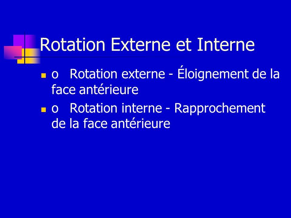 Rotation Externe et Interne oRotation externe - Éloignement de la face antérieure oRotation interne - Rapprochement de la face antérieure
