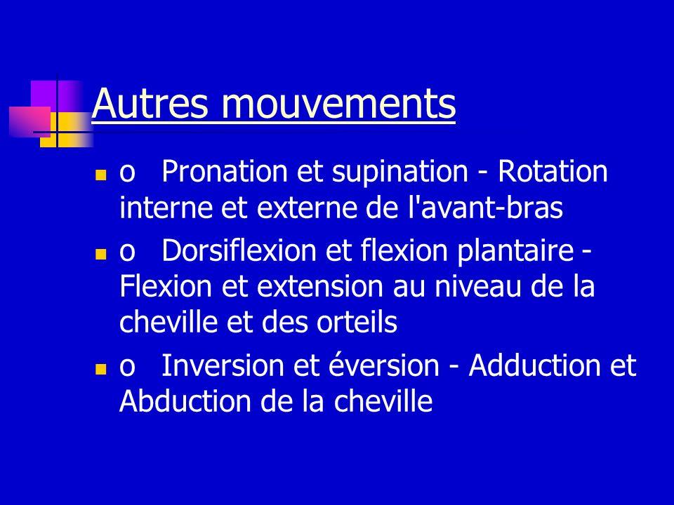 Autres mouvements oPronation et supination - Rotation interne et externe de l'avant-bras oDorsiflexion et flexion plantaire - Flexion et extension au