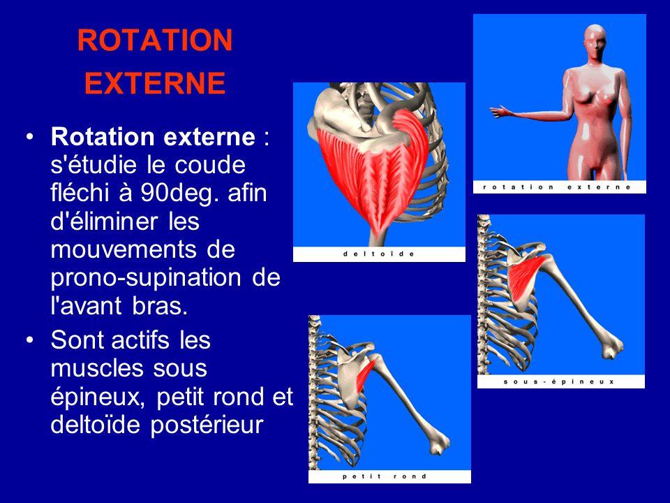 ROTATION EXTERNE Rotation externe : s'étudie le coude fléchi à 90deg. afin d'éliminer les mouvements de prono-supination de l'avant bras. Sont actifs