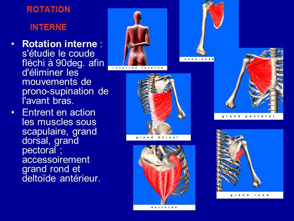 ROTATION INTERNE Rotation interne : s'étudie le coude fléchi à 90deg. afin d'éliminer les mouvements de prono-supination de l'avant bras. Entrent en a