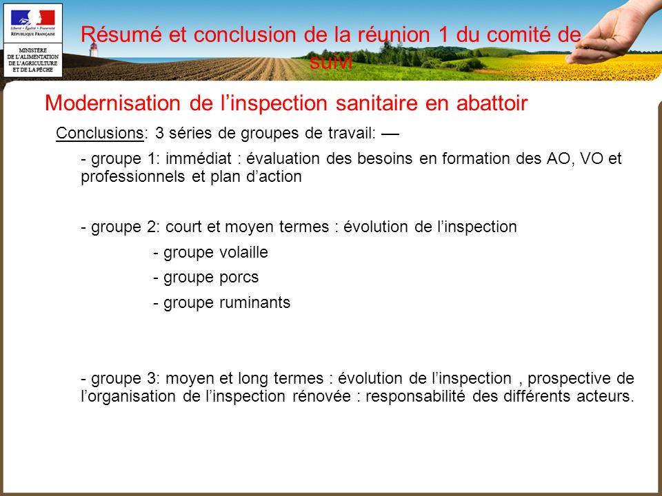 Résumé et conclusion de la réunion 1 du comité de suivi Conclusions: 3 séries de groupes de travail: –– - groupe 1: immédiat : évaluation des besoins