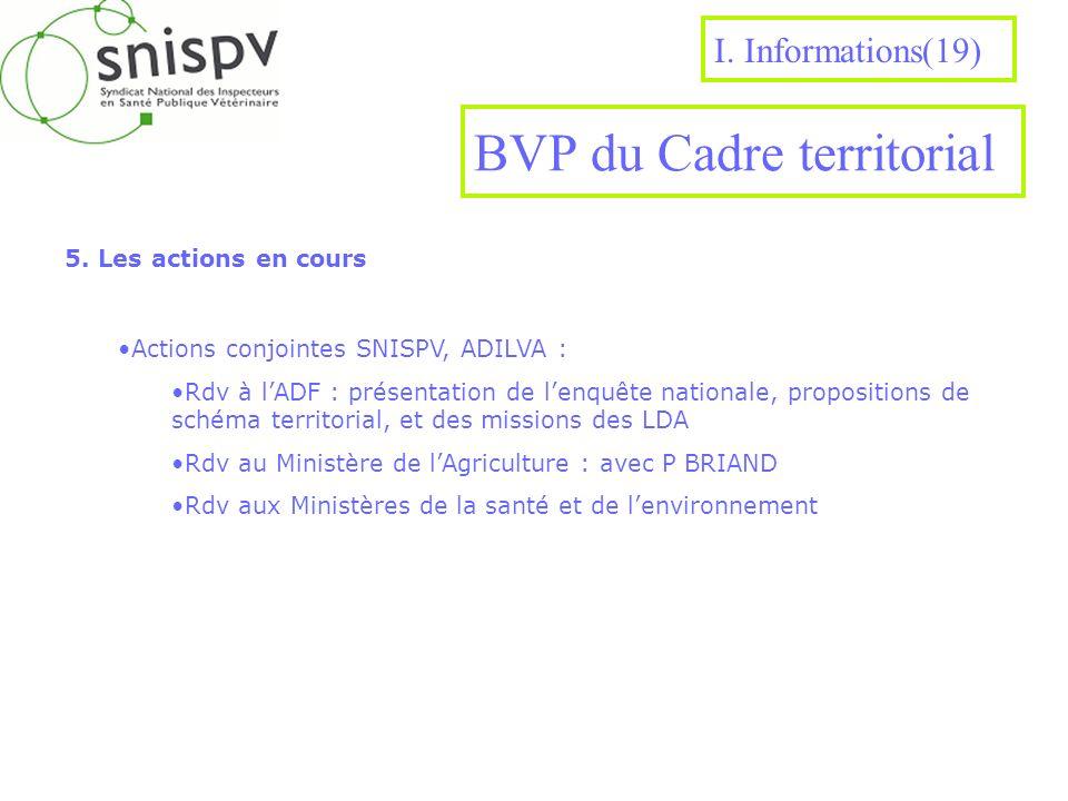BVP du Cadre territorial 5. Les actions en cours I. Informations(19) Actions conjointes SNISPV, ADILVA : Rdv à lADF : présentation de lenquête nationa