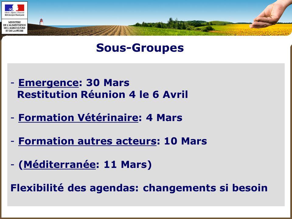 R 2: 3 Mars - Suite épidémio - Restitution 2 réunions du SG - Emergence: premier balayage puis SG le 30 Mars - Contexte international Réunions plénières Groupe 2