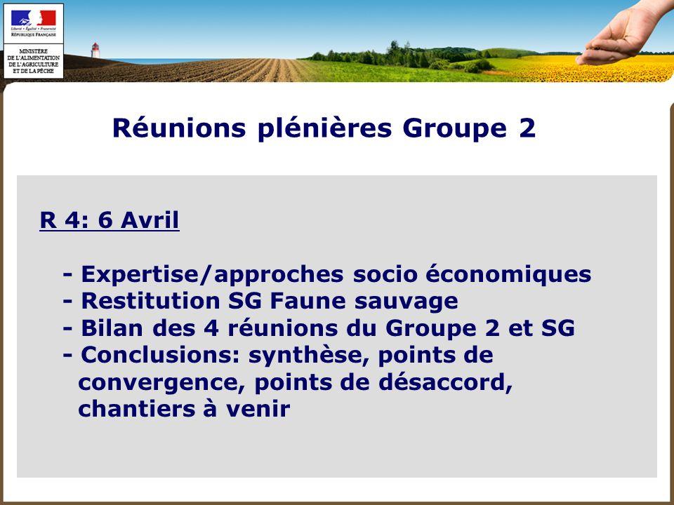 - CR 2-3 pages: circulés, validés à la réunion R+1 - Rapport final Groupe 2 - Rapport de synthèse EGS des groupes 1+2+3+4 Compte Rendus