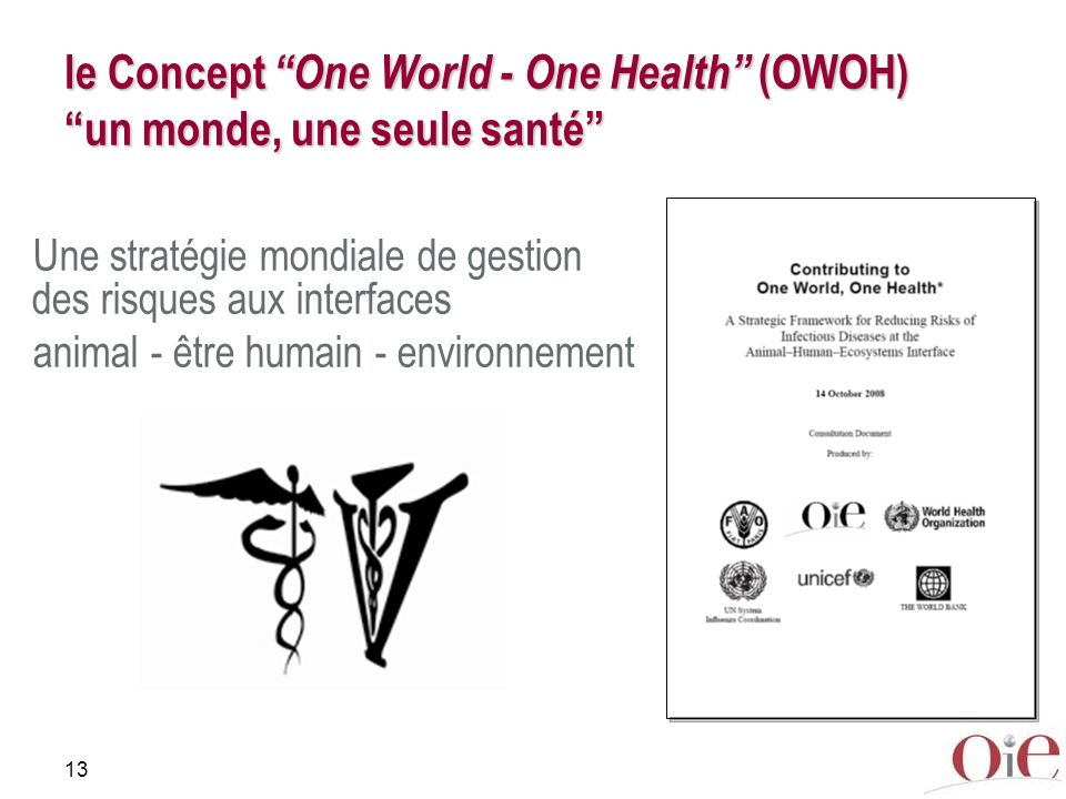 13 le Concept One World - One Health (OWOH) un monde, une seule santé Une stratégie mondiale de gestion des risques aux interfaces animal - être humain - environnement
