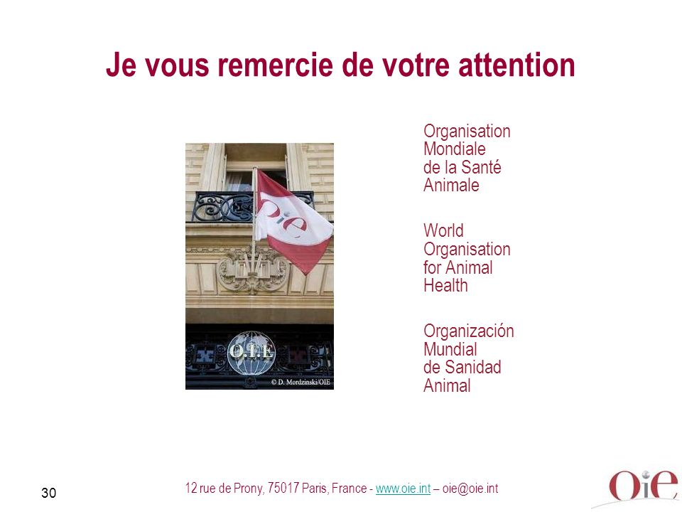 30 12 rue de Prony, 75017 Paris, France - www.oie.int – oie@oie.intwww.oie.int Je vous remercie de votre attention Organisation Mondiale de la Santé Animale World Organisation for Animal Health Organización Mundial de Sanidad Animal